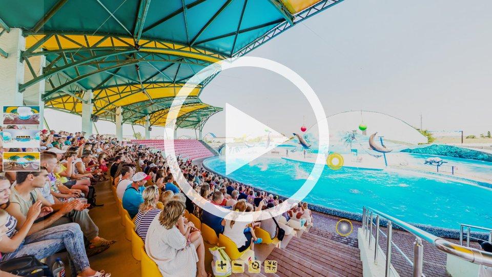 3D-тур дельфинария Оскар в Кирилловке
