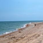 Пляжи в заказнике