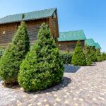 База отдыха Форт-Азов