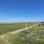 Вид на заповедную зону и разнотравье