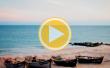 Веб-камера Кирилловки в Степке - Коралловый остров