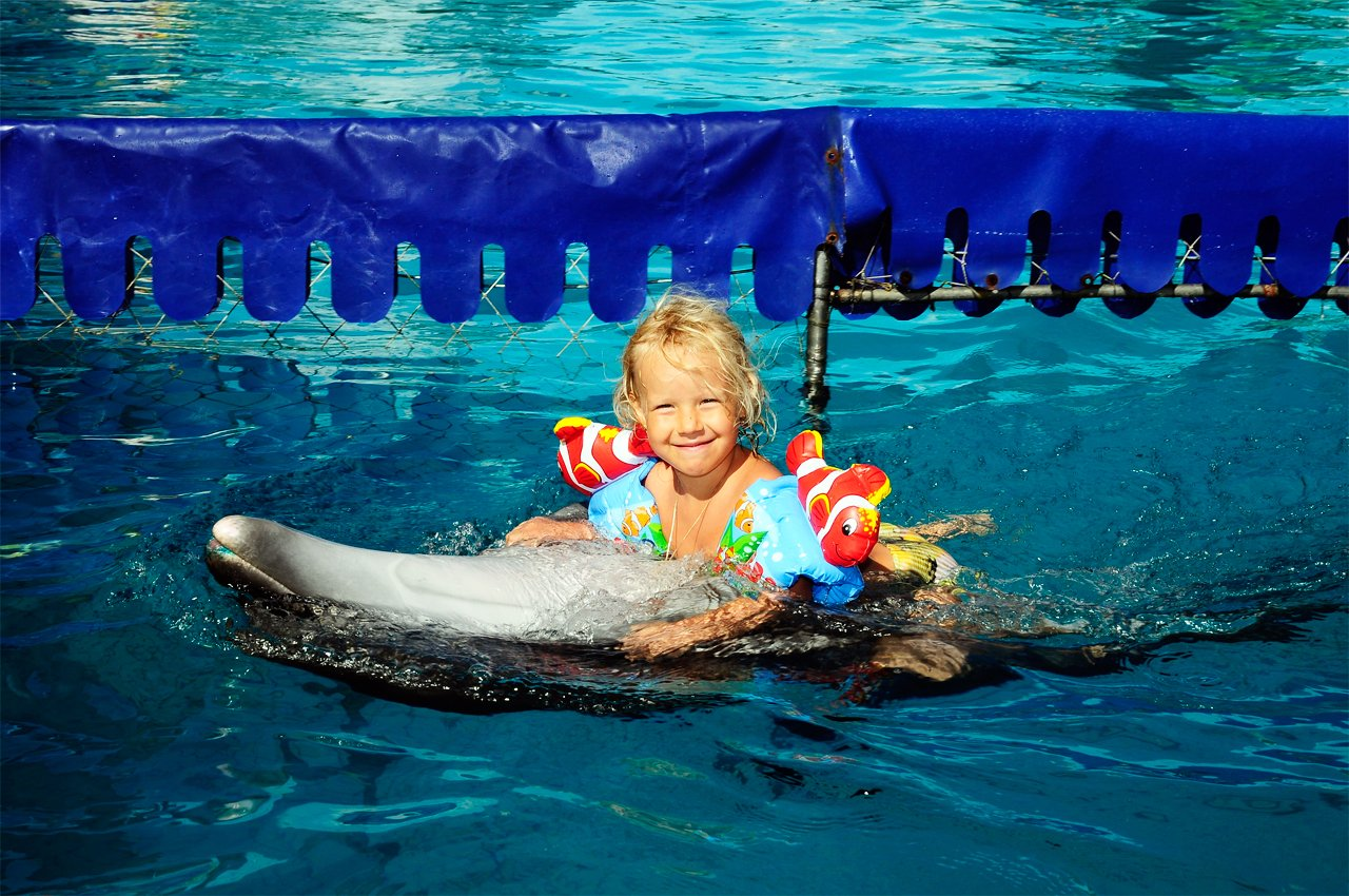 Дельфинарий в Геническе - Оскар