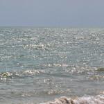 Пересыпь 2013 год, море