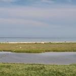Вид море и лиман