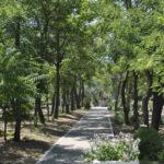 База отдыха Стандарт в Кирилловке