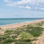 Море и пляжи в Стрелковом