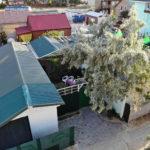 Домик «Оазис» 4-х местный