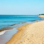 Пляж, Даша Дорошенко