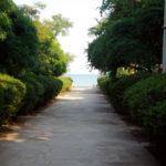 Проход к морю, Алена Шаткина